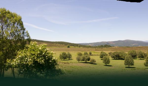 Casa Galeguesa, un proyecto comprometido con el rural gallego