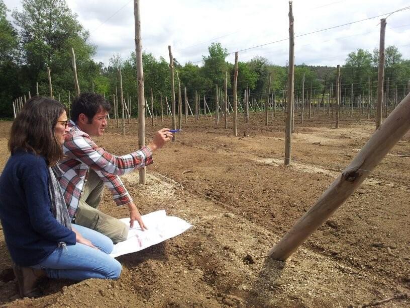 Empresas que quieren servir de modelo de desarrollo en el rural